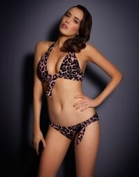 Tabby Agent Provocateur #1908